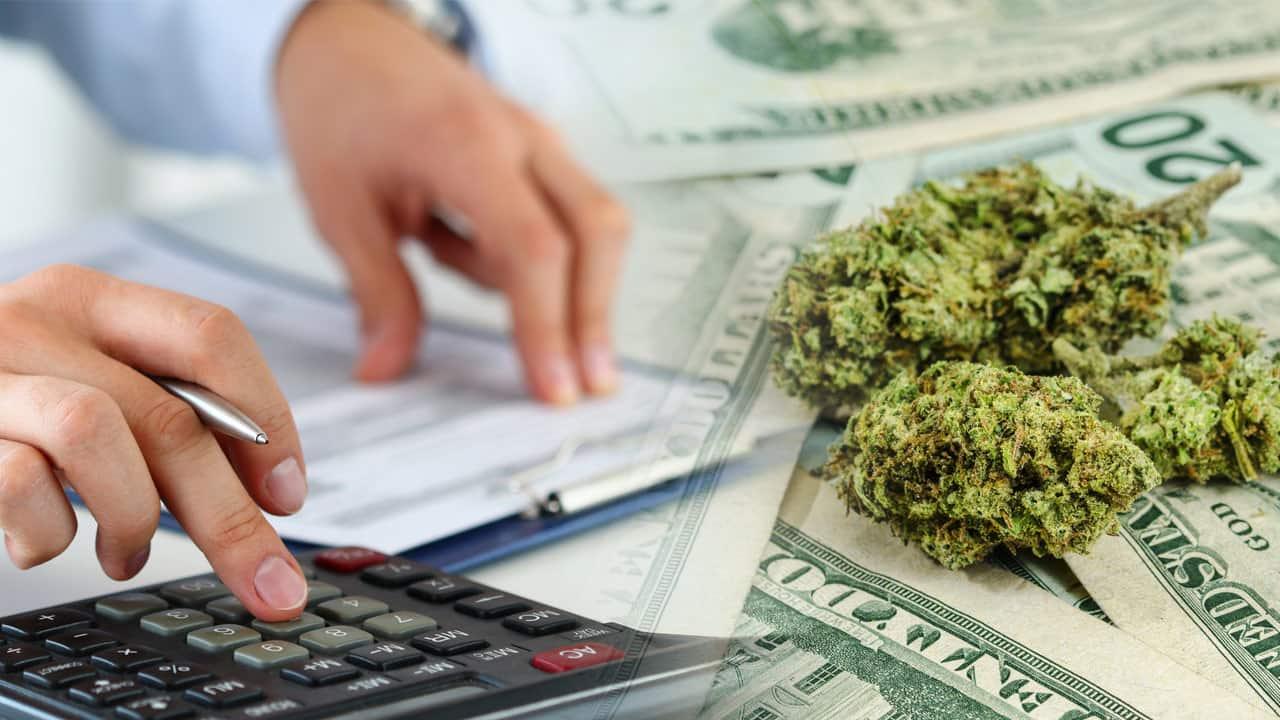 Starting A Cannabis Business - Cannabis Entrepreneurship 101